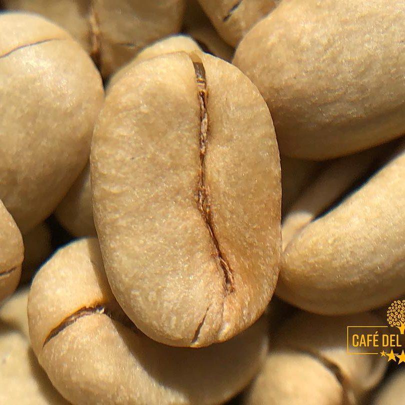cafe-del-general-green-beans